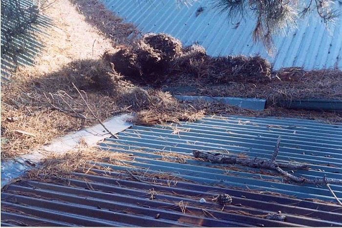 Why it is pointless to put gutter guard into valleys!