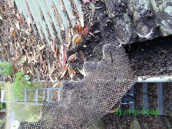 Yet another steel mesh being removed for obvious reasons